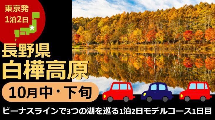 【国内旅行おすすめ】松本城と花火を楽しむ1日目! 2021年10月中・下旬 1泊2日 東京発 白樺高原 その6『ビーナスラインで3つの湖を巡る1泊2日モデルコース1日目』